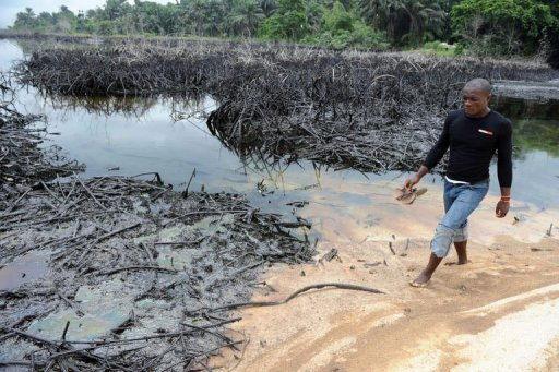 Un rivage souillé par du pétrole dans le delta du Niger en juin 2010 AFP/Archives Pius Utomi Ekpei