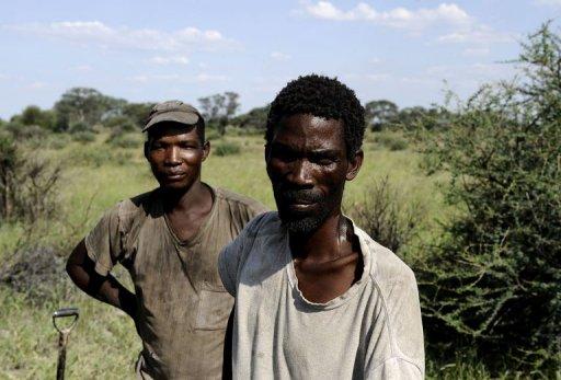 Des Bushmen à Molapo, dans la réserve du Kalahari, le 19 février 2012 AFP Stephane de Sakutin