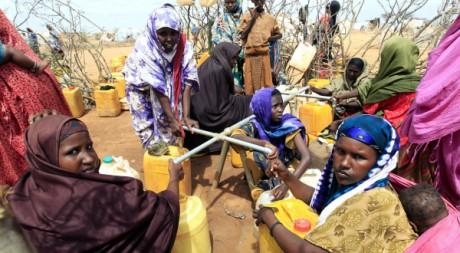 Des réfugiés somaliens collectent de l'eau dans le camp de Dadaab au Kenya, le 3 avril 2011. REUTERS/Thomas Mukoya