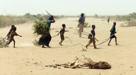 A family gathers sticks and branches for firewood, by Oxfam East Africa via Flickr CC