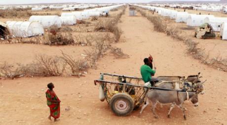 Camp de réfugiés somaliens fuyant la sécheresse et la famine, août 2011. © REUTERS/Thomas Mukoya