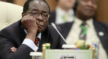 Sommet de l'Union africaine à Tripoli le 29 novembre 2010. Reuters/Francois Lenoir