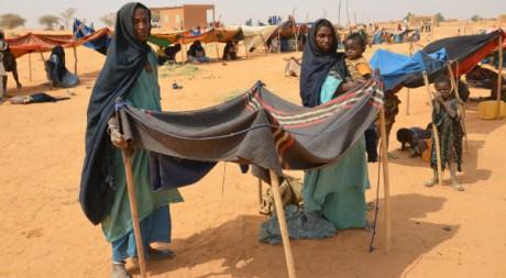 Des réfugiés maliens dans le camp de Chinegodar dans l'ouest du Niger, le 4 février 2012. AFP PHOTO BOUREIMA HAMA