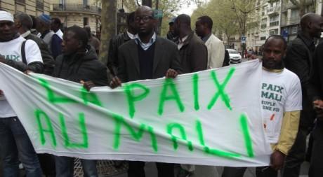 Manifestants de la marche du 7 avril. © Jacques-Alexandre Essosso, tous droits réservés.