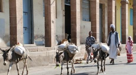 Des Erythréens dans une nrue d'Asmara, la capitale © PETER MARTELL / AFP