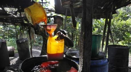 Détaillant d'huile de palme, Mudemba (nord-ouest du Cameroun), juin 2012 © REUTERS/Reuters Staff
