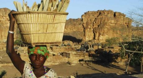 Une femme du Pays Dogon dans le village de Benimato dans l'ouest du Mali. REUTERS/Florin Lorganda
