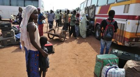 Maliens quittant la ville de Gao, avril 2012. © ISSOUF SANOGO / AFP
