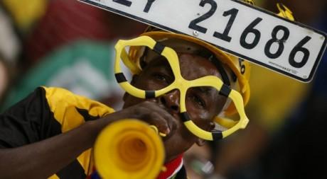Un supporter sud-africain au match amical Norvège-Afrique du Sud, le 8 janvier 2013. Reuters/Mike Hutchings