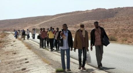 Travailleurs subsahariens, Libye, octobre 2012. © MAHMUD TURKIA / AFP
