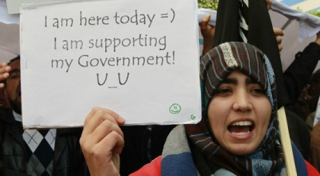 Rassemblement de soutien à Ennahda à Tunis le 16 février 2013. REUTERS/Louafi Larbi