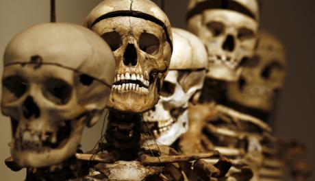 Squelettes, musée Lombroso, Turin, février 2013 / REUTERS
