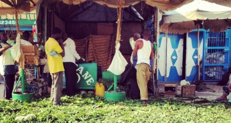 Vendeurs de khat en Somalie ©Abdi Farah, tous droits réservés.