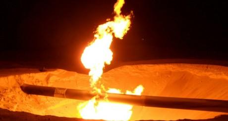 Tuyaux de gaz dans le nord Sinaï . REUTERS/Stringer