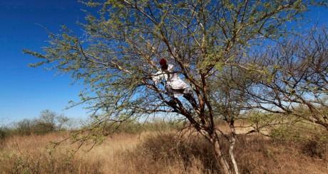 Paysan soudanais, janvier 2013 / REUTERS
