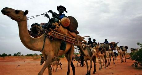 Une caravane de Touaregs au Niger / REUTERS
