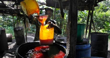 Petit producteur d'huile de palme, Nigeria / REUTERS