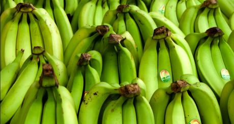 Régimes de bananes / Flickr CC