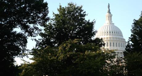 Une vue du Capitole à Washington, octobre 2013 / Reuters