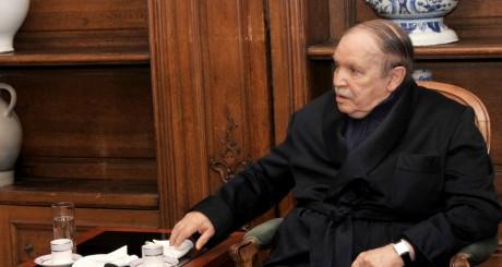 Abdelaziz Bouteflika lors d'une apparition télévisée, Paris, juin 2013 / AFP