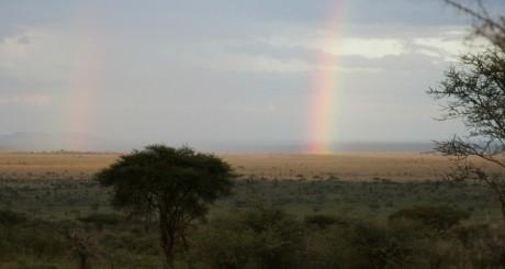 Arc-en-ciel sur la plaine du Serengeti, by jjmusgrove via Flickr CC.