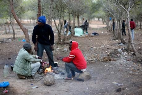 Camps de migrants africains à Nador au Maroc, REUTERS / Juan Medina