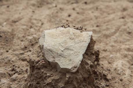 Une pierre en forme d'outil qui date de 3.3 millions d'années et découverte au Kenya. Crédit photo: MPK-WTAP