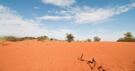 Le désert du Kalahari. Crédit photo: Karen Corby via Flickr, License by CC