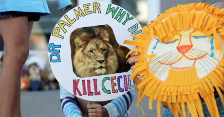 Manifestation devant la clinique où travaille James Palmer, l'Américain qui a tué Cecil le lion. Photo: REUTERS/Eric Miller