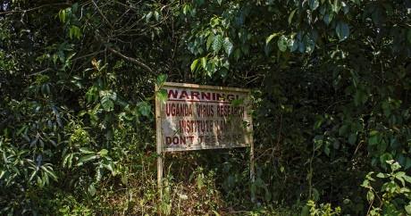 Un panneau signale l'entrée de la forêt de Zika en Ouganda, le 29 janvier 2016. Crédit photo: ISAAC KASAMANI / AFP