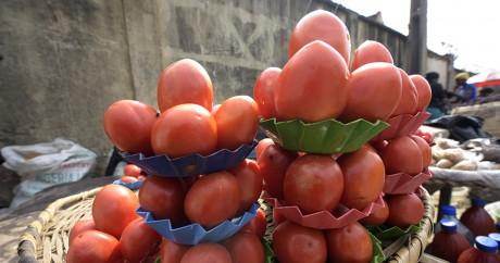 Des tomates sur un marché de Lagos le 25 mai 2016. Crédit photo: PIUS UTOMI EKPEI / AFP