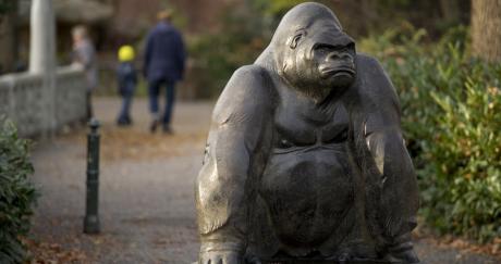 Une sculpture de gorille au zoo de Berlin, le 2 septembre 2013. ODD ANDERSEN / AFP