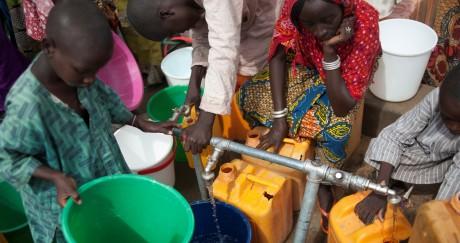 Des femmes et des enfants collectent l'eau d'un puits près de Maiduguri dans le Nord-Est du Nigeria. STEFAN HEUNIS / AFP
