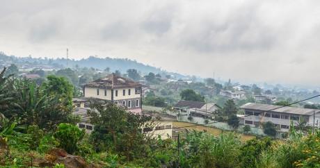 Au pied du mont Cameroun. Crédit photo: jbdodane via Flick. CC BY-NC