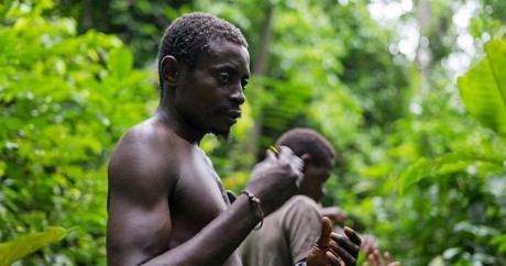 Des pygmées de l'ethnie Bagyali cueillent des plantes anti-malaria au Cameroun, le 26 mai 2017. NABILA EL HADAD / AFP