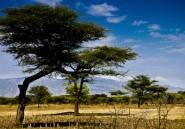 Sahel, un découpage au cordeau et des pays dans le flou