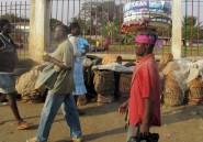 La titroïde, une passion camerounaise