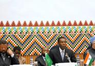 L'Inde investit l'Afrique