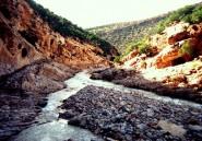 Le dérèglement climatique profite à l'Afrique