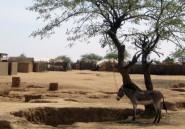 Tchad: Koulsy Lamko, l'écrivain de l'exil