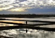 L'Afrique sans frontières n'est pas pour demain