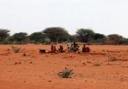 Famine: les pays riches ont laissé faire