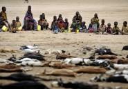 Le début de la faim pour les Turkanas