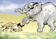 Les 10 animaux de la brousse politique française