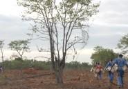 Comment le Mozambique se débarrasse de ses mines?