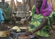 Et si la chenille était la solution à la crise alimentaire?