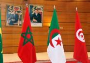 La Tunisie, nouveau modèle arabe?
