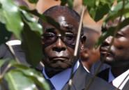 Mugabe aurait pu ne pas finir dictateur