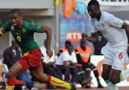 Les Lions d&#039;Afrique noire ne rugissent plus