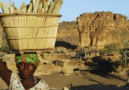 Au Pays Dogon, le temps de la survie